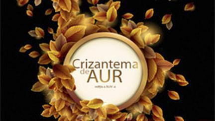 Vocile Romaniei in recital la Crizantema de Aur 2011