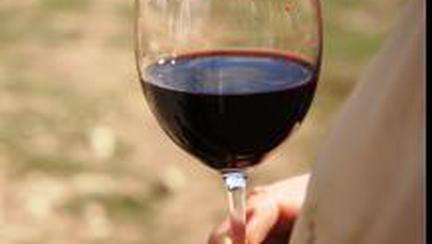 Primul vin Cabernet din plantaţia Aliman