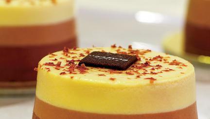Crema bavareză de ciocolată
