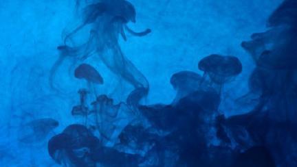 albastru de metil