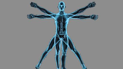 curiozitati despre corpul omenesc