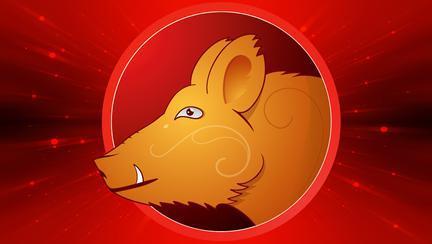 Horoscopul chinezesc 2018 pentru Porc