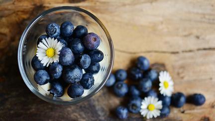 beneficiile afinelor pentru organism