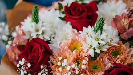 ce flori ar trebui să îi oferi soției, mamei sau fiicei