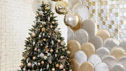 Cei mai frumoși brazi de Crăciun