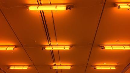 (P) Vată minerală sau polistiren pentru izolarea tavanului: ce alegi?