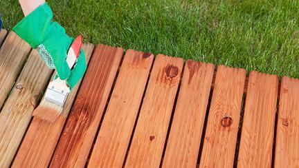 (P) Tips&tricks: află cum să investești într-un lac pentru lemn de calitate!