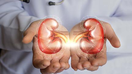 COVID-19 și rinichii: Ce ar trebui să știți pentru a vă proteja organismul?