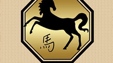 Compatibilitati in zodiacul chinezesc – Cal