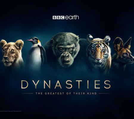 Dynasties_Hero_Iconic_V2_A3_Square_420x297mm_300dpi_CMYK_AW