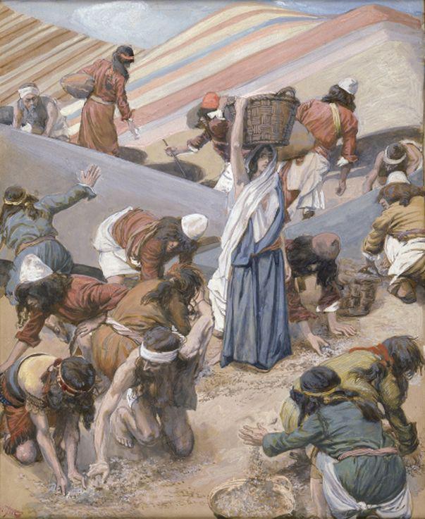 Ce era mana, hrana miraculoasă trimisă de Dumnezeu în pustie