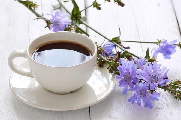 Remedii împotriva constipației. Cafea de cicoare