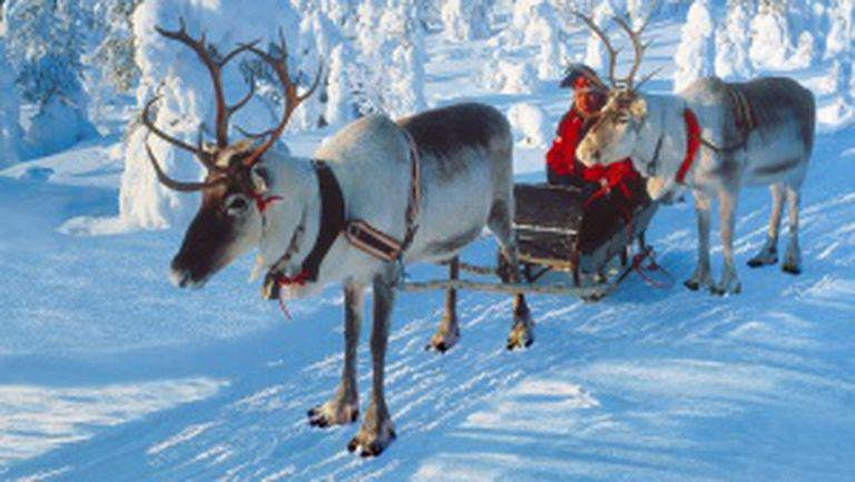 Revelion în Laponia