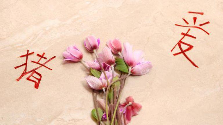 7 sfaturi Feng Shui pentru o viaţă plină de iubire