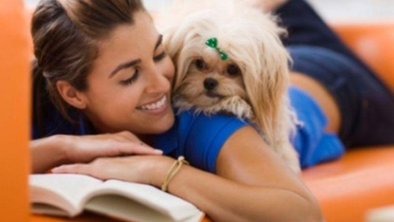 5 dovezi de iubire pentru animalul tău de companie