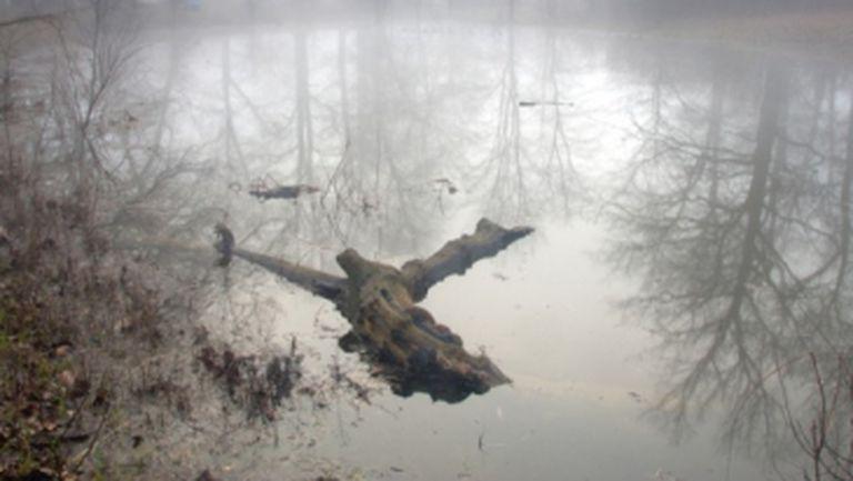Paranormal: Top cele mai bântuite parcuri