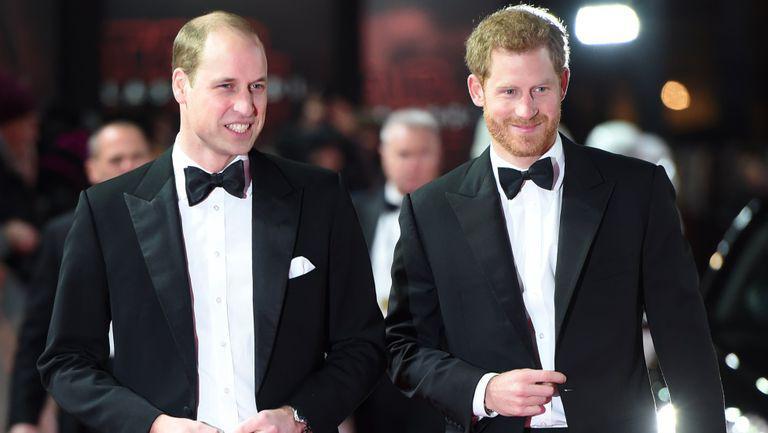 Printii William si Harry