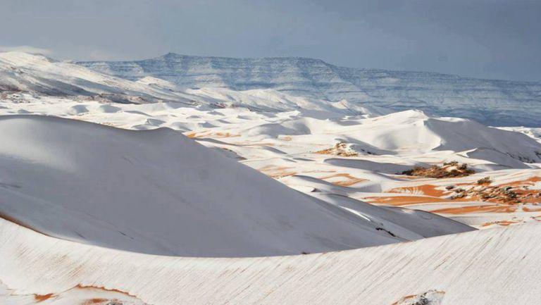A nins in Sahara
