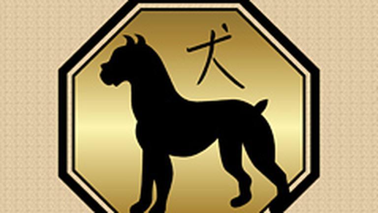 Compatibilitati in zodiacul chinezesc – Caine