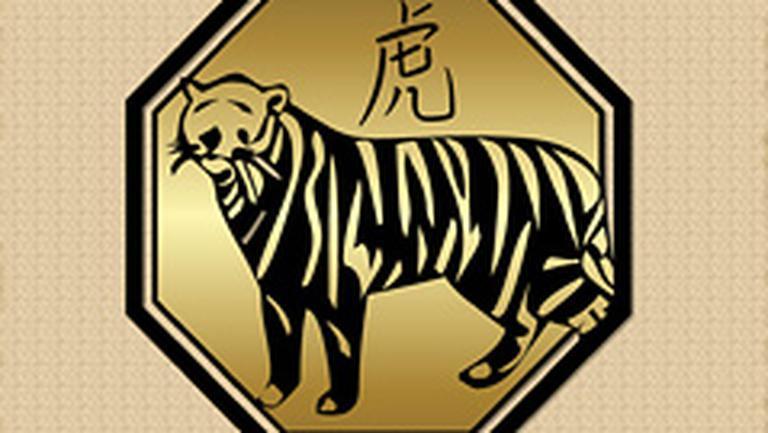 Compatibilitati in zodiacul chinezesc – Tigru