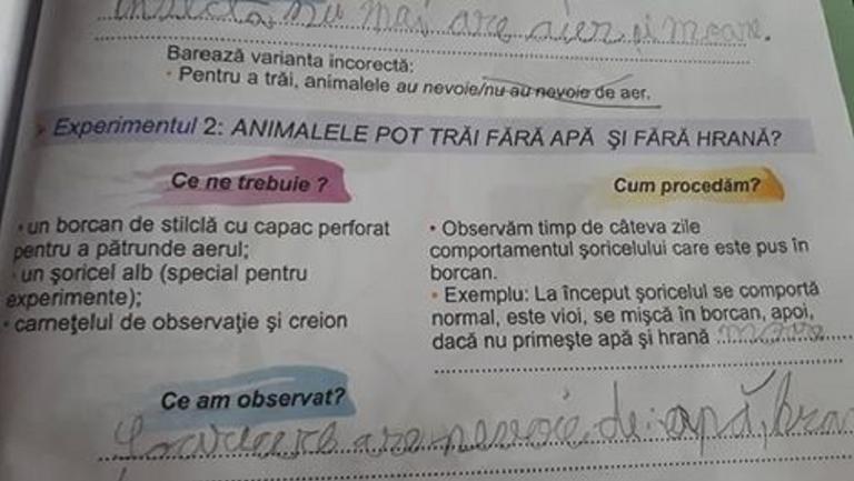 Experiment ciudat într-un manual de clasa a II-a. Ce li se cere copiilor să facă?