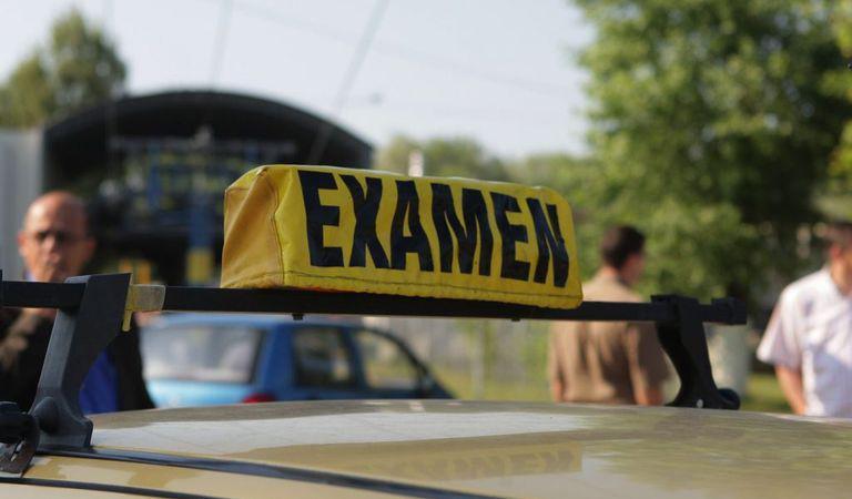 O tânără a picat examenul auto din cauza unor porumbei