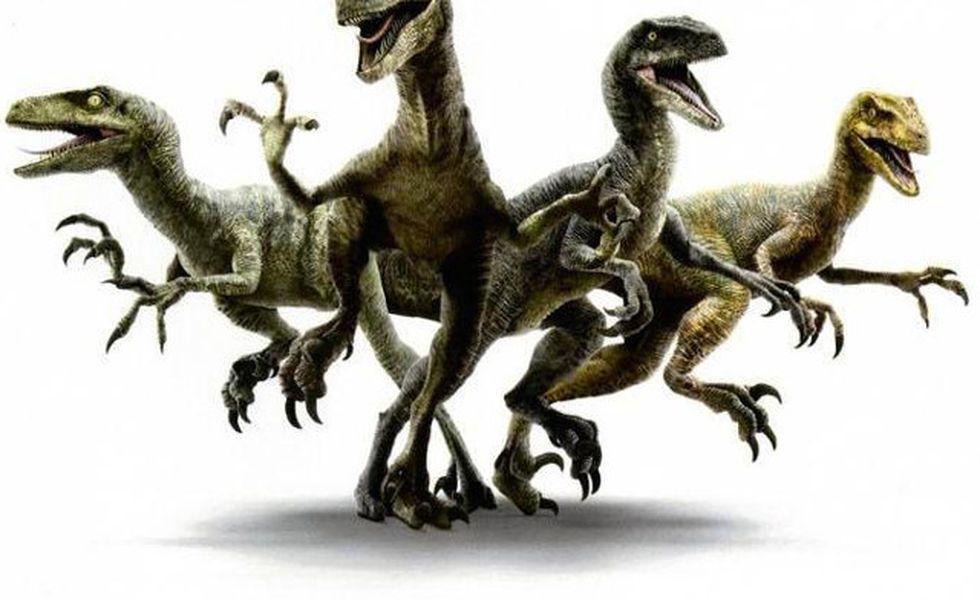 Chris pratt velociraptor gang