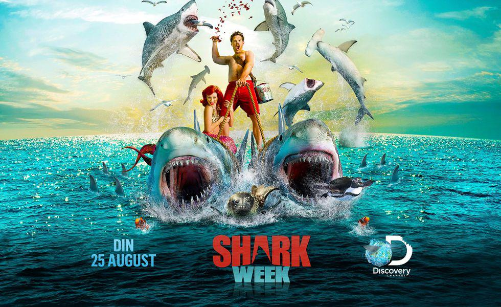 Shark Week_2014_layout