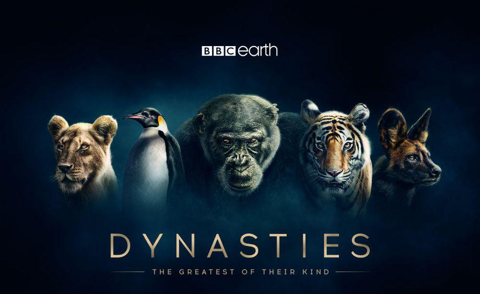 Dynasties_Hero_Iconic_V2_A3_Square_420x297mm_300dpi_CMYK_AW