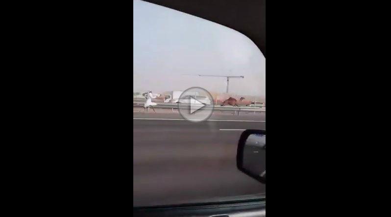 Alergatul după cămile – Doar în Dubai